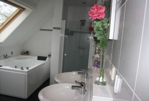 Alddiel badkamer